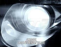 OPT7 Premium AC 55W CANBUS HID Kit H11 6000K BLUE Xenon Light Conversion